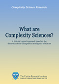 What are Complexity Sciences?