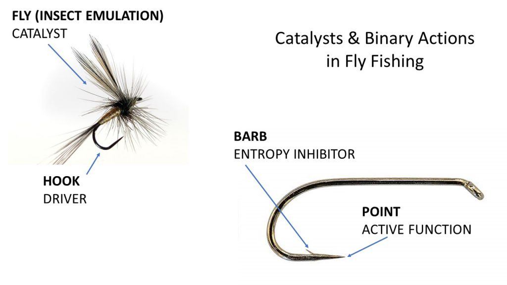 binary actions in Fly fishing
